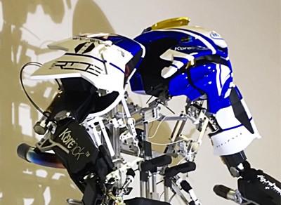 SK-005-F Skeletonics Arrive Figureheads Model